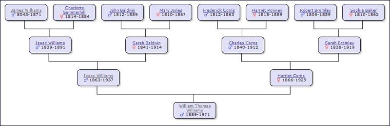 Image of pedigree chart