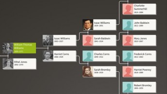 Ancestry family tree